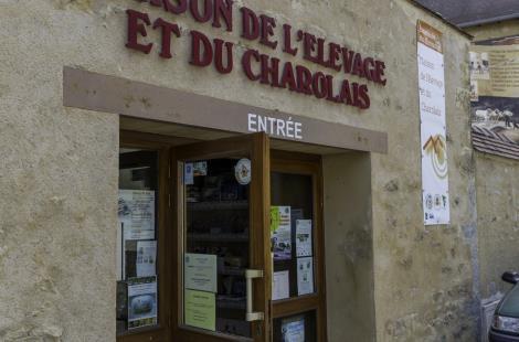 Visite Couplée de la Maison de l'Elevage et du Charolais et Marché au Cadran