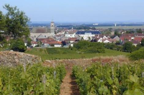 Marsannay-la-Côte
