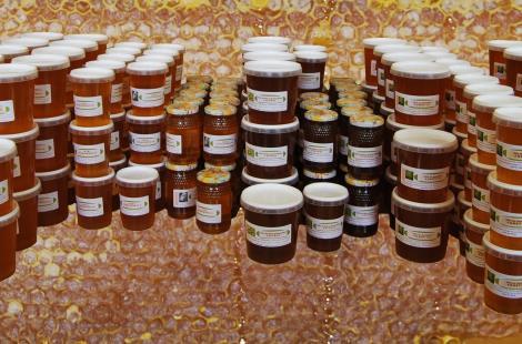 miels de Bourgogne Magali