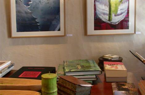 Exposition Claire de Virieu galerie Spiralinthe Semur-en-Aux
