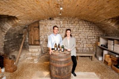 Dégustation découverte des vins de Chablis et des vins de Bourgogne