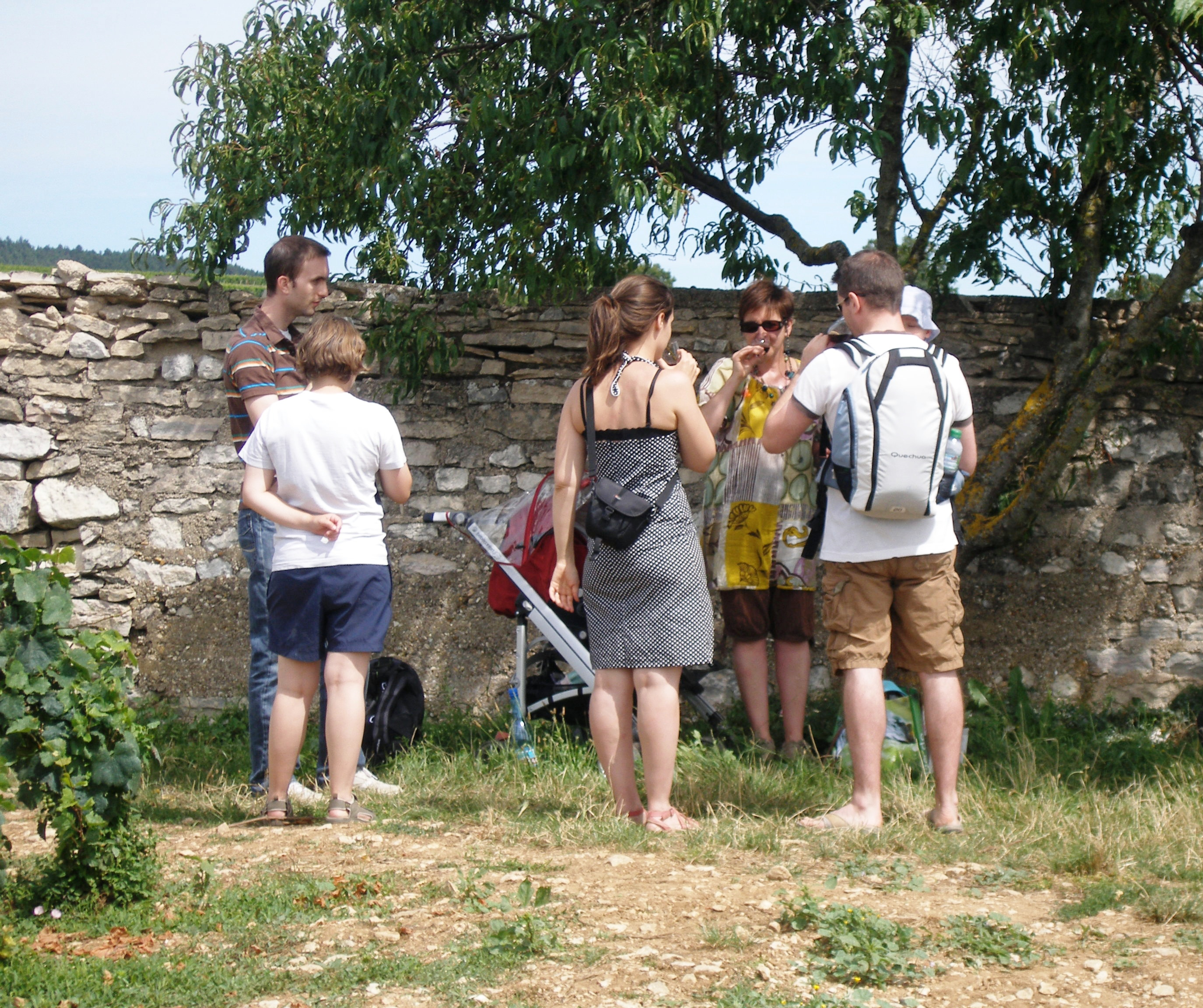 Clos de bourgogne les ateliers de la vigne et du vin vougeot c te d 39 - Mac dan orange les vignes ...