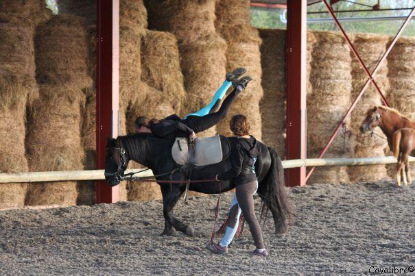voltige - Ferme Equestre Cavalibre © FE cavalibre
