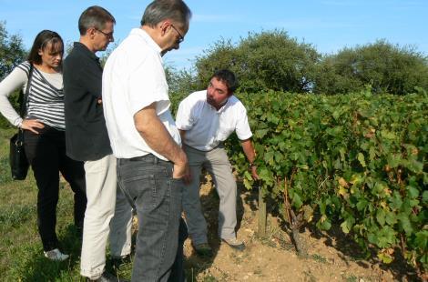 Balade Atelier Vigne et Vin17