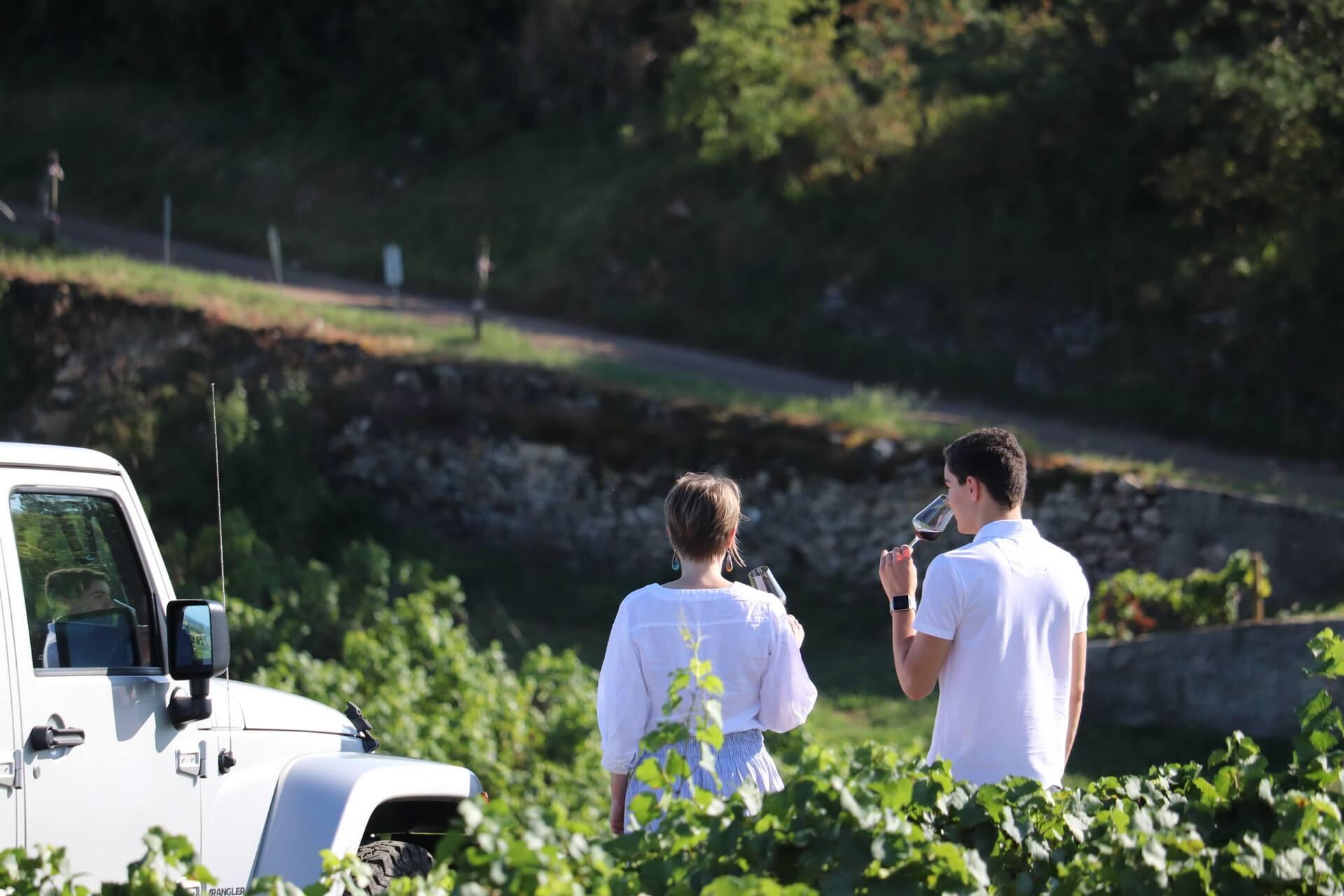 Des dégustations au coeur des vignes avec Sensation Vin - Sensation Vin © Sensation Vin