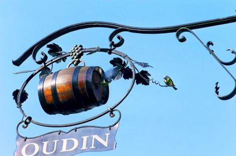 Domaine Oudin
