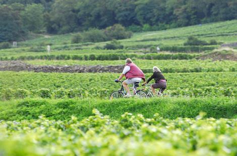Givry-Photo-Alain-Doire-Bourgogne-Tourisme-1