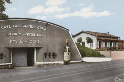 Grands Crus Blancs