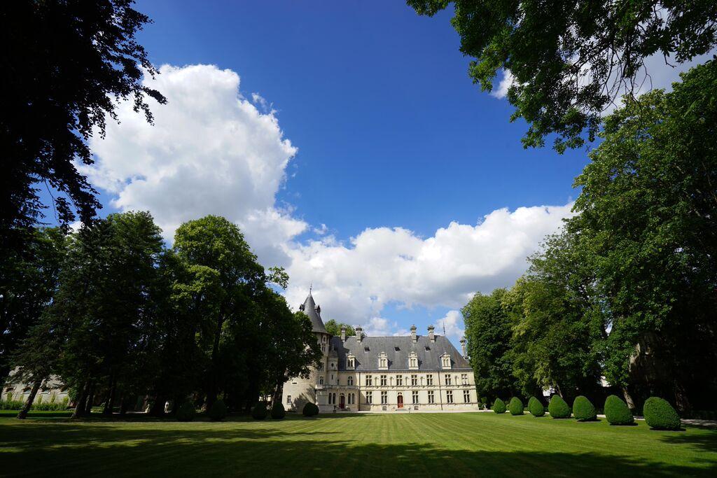 Montigny parc buis ligne des pleurants Château de Montigny-sur-Aube © Château de Montigny-sur-Aube