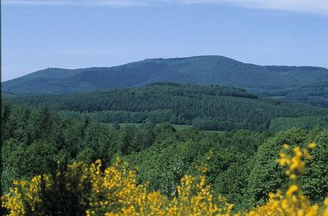Mont-Beuvray, le Morvan
