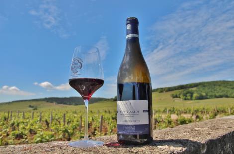 bouteille-vin-degustation-burgundia