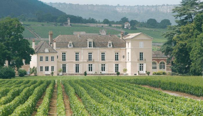 OP031BOU000V504DFL - chateau-de-meursault_chateau-de-meursault
