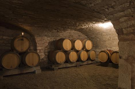 Cave Domaine Guillemard-Clerc