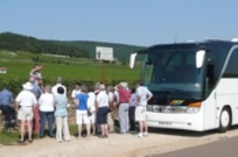 Circuit du vin - Wine tour