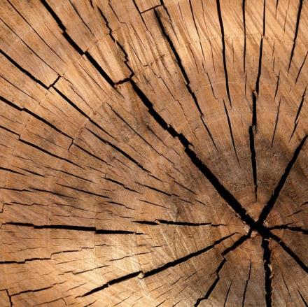 Bois © Creativ Commons