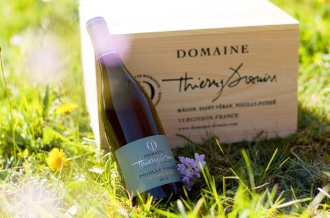 Domaine Thierry Drouin