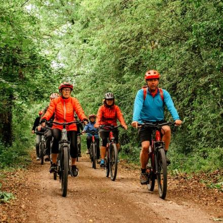 Echappee-nature-balade-guidee-velo-parc-national-foret-05-Jean-Michel-Barbier