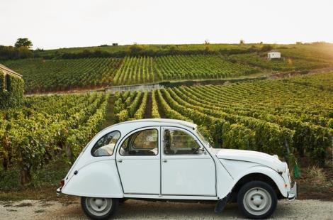 Expérience-Bourgogne