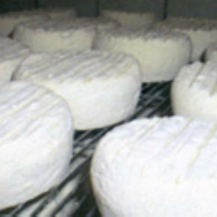 Fromagerie de Neuftables