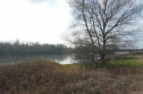 La Loire : fleuve indomptable