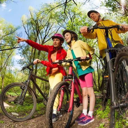 Sports family searching mountain bike's ways