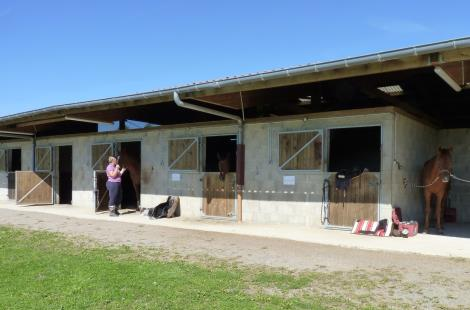 Poney_club_decouvertes_Delaye_Carinne (3)