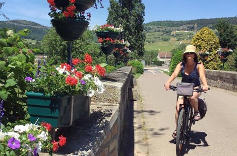 Santenay on a Bike