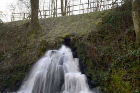 Balade numérique : sentier nature les Sources de l'Yonne