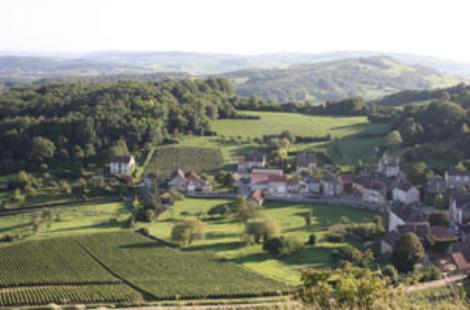 Domaine Chofflet-Valdenaire