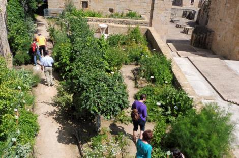 jardin des simples 4 jlm 2017