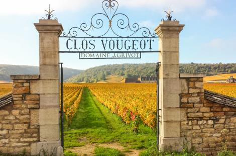 photo-porte-clos-vougeot