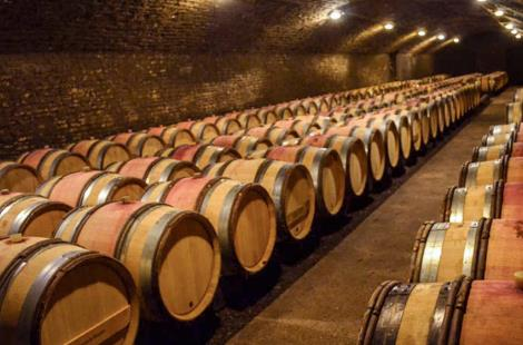 photo-visite-de-caves-cote-beaune