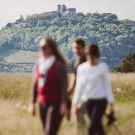 yt_rando-groupe-vezelay_copyright-j-jacquel